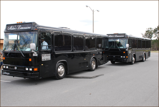 Bus rental or charter tallahassee thomasville for Motor city party bus